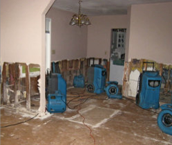 Water Damage Emergency Tips Tex A Clean