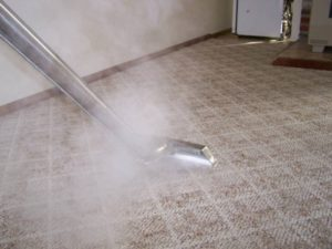 Carpet cleaning deals