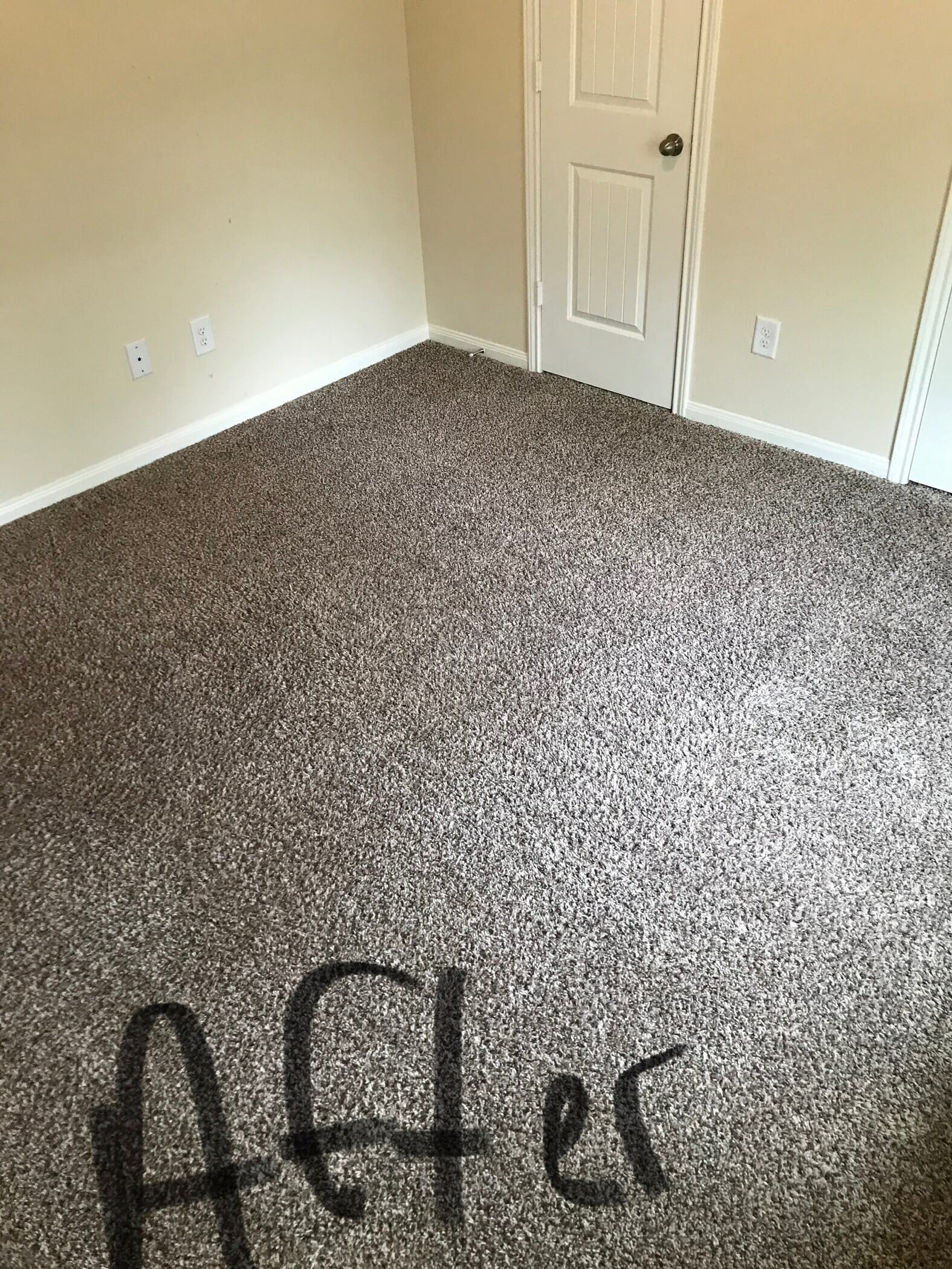 Houston Carpet Cleaning Service